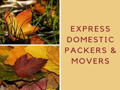 ex how packers and movers